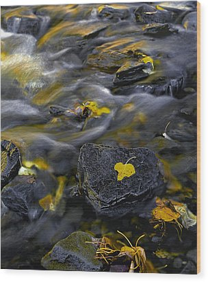 Sierra Stream Wood Print