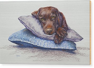 Siesta Wood Print by Cynthia House