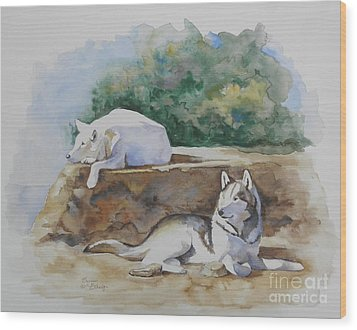 Siesta Time Wood Print by Suzanne Schaefer