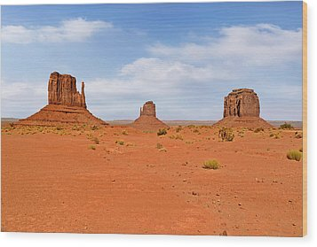Signatures Of Monument Valley Wood Print by Christine Till