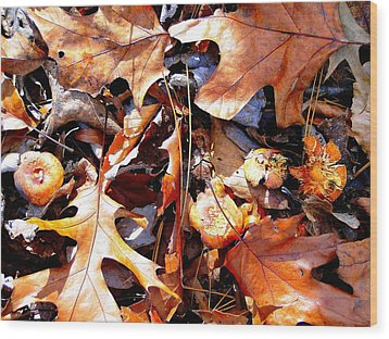 Signs Of Autumn Wood Print