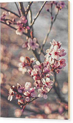 Wood Print featuring the photograph Signs Of Spring by Joshua Minso