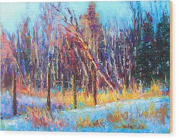 Signs Of Spring - Trees And Snow Kissed By Spring Light Wood Print by Talya Johnson