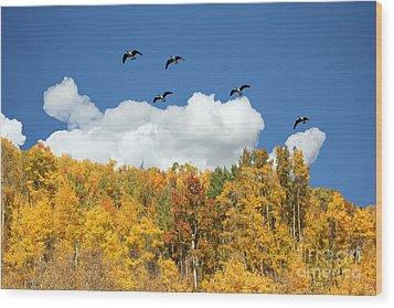 Signs Of The Season Wood Print by Bob Hislop