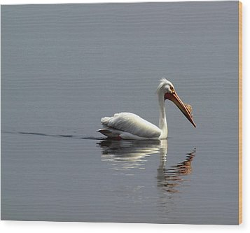 Silent And Reflective Wood Print by Thomas Young
