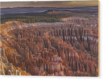 Silent City - Bryce Canyon Wood Print by Eduard Moldoveanu