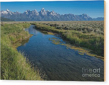 Silent Pathway To The Grand Tetons Wood Print by Sandra Bronstein