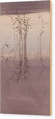 Silent Rhapsody. Sacred Music II Wood Print by Jenny Rainbow