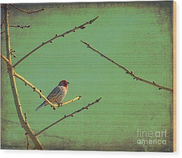 Silent Song Wood Print