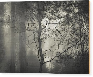 Silent Stirring Wood Print by Amy Weiss