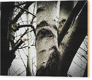 Wood Print featuring the photograph Silent Witness by Zinvolle Art
