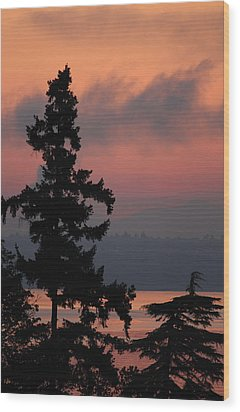 Wood Print featuring the photograph Silhouette At Sunrise by E Faithe Lester