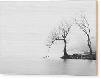 Wood Print featuring the photograph Silhouette In Fog by Yvonne Emerson AKA RavenSoul