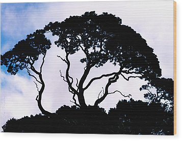 Wood Print featuring the photograph Silhouette by Jim Thompson