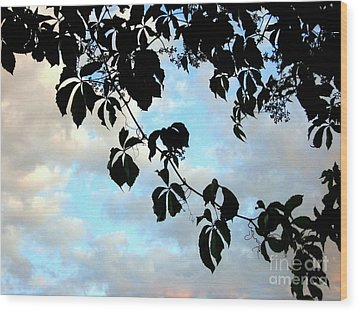 Silhouette Wood Print by Kathy Bassett