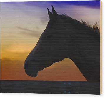 Silhouette Of A Horse At Sunset Wood Print by Wolf Shadow  Photography