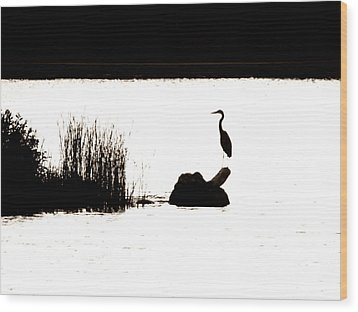 Wood Print featuring the photograph Silhouette by Zinvolle Art