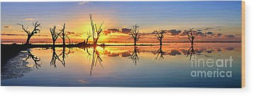 Silhouetted Sential Sunset Wood Print by Bill  Robinson