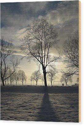 Silhouettes And A Long Winter Shadow  Wood Print