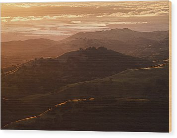 Silicon Valley Wood Print by Francesco Emanuele Carucci