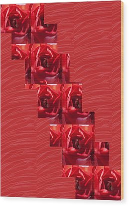 Wood Print featuring the photograph Silken Red Sparkles Redrose Across by Navin Joshi