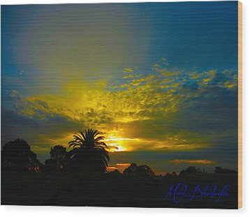 Silken Sunset Wood Print