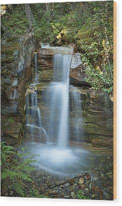 Silky Flow Of Waterfalls, Rainbow Wood Print by Roberta Murray