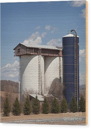Silo House With A View - Color Wood Print