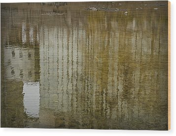 Silo Reflection Wood Print by Eric Soucy