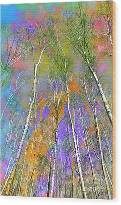 Silver Birch Wood Print by Michelle Orai