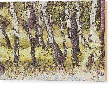 Silver Birch Wood Print by Odon Czintos