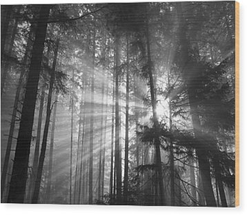 Silver Light Wood Print