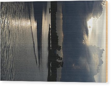 Silver Reflections Wood Print by Adam Panek