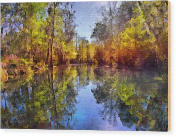 Silver River Colors Wood Print by Christine Till