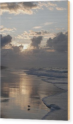 Silver Sunrise Wood Print by Mim White