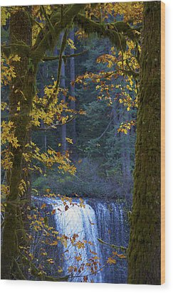 Silverton Falls Oregon Wood Print