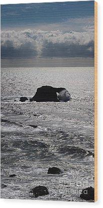 Silvery Ocean Sheen Wood Print by Wernher Krutein