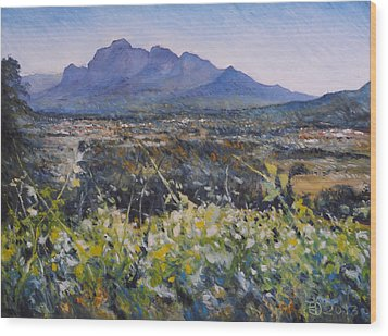 Simonsberg Cape Town South Africa Wood Print by Enver Larney