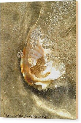 simple Shell  Wood Print by Kim Loftis