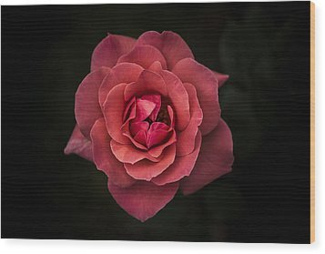 Simplicity Is Beauty Wood Print