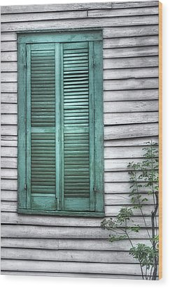 Simply Green Wood Print by Brenda Bryant