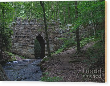 Since 1802 Poinsett Bridge Wood Print