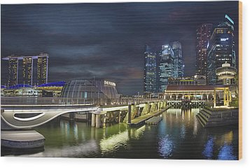 Singapore City By The Fullerton Pavilion At Night Wood Print by David Gn