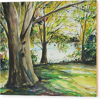 Singeltary Shade Wood Print by Scott Nelson