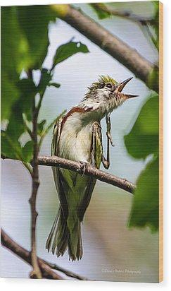 Singing A Song Of Joy Wood Print by Sheen Watkins