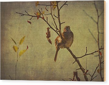 Wood Print featuring the photograph Singing Sparrow by Peggy Collins