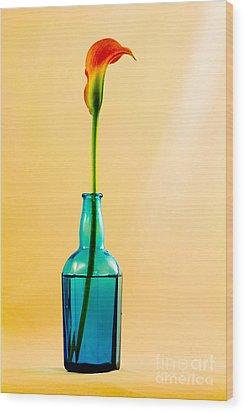 Single Calla In Blue Bottle Wood Print