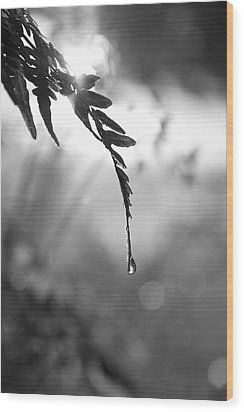 single drop BW Wood Print