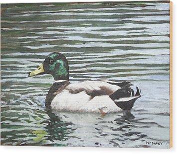 Single Mallard Duck In Water Wood Print by Martin Davey