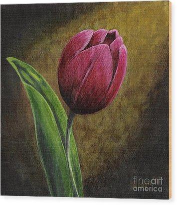 Single Tulip Wood Print